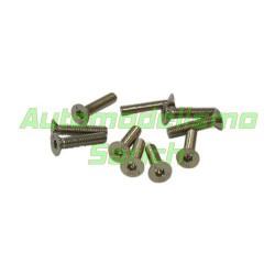 Tornillos avellanados 3x16mm (10u)