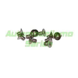 Tornillos avellanados 4x6mm (10u)